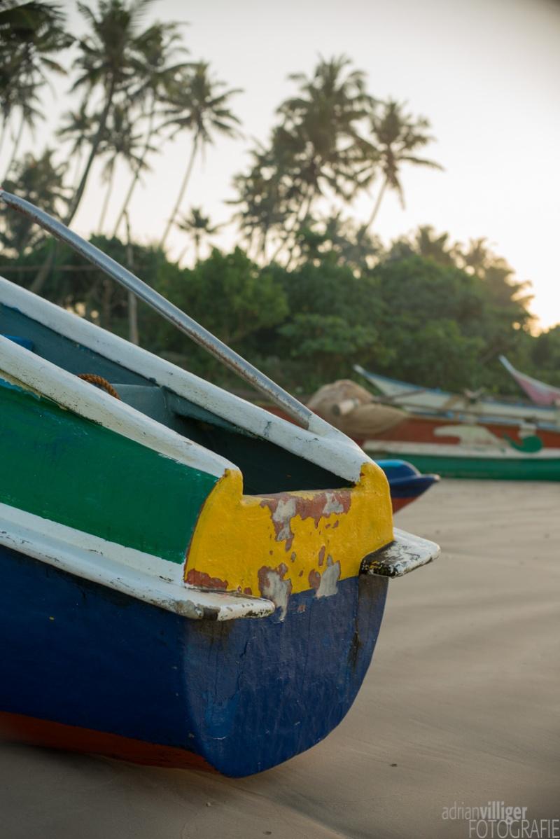 15_D600_SriLanka-6837