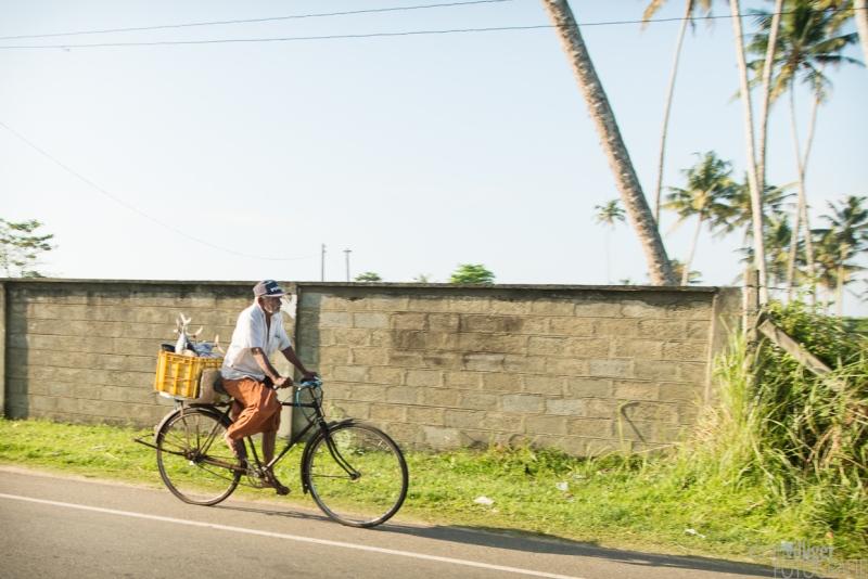 15_D600_SriLanka-7361