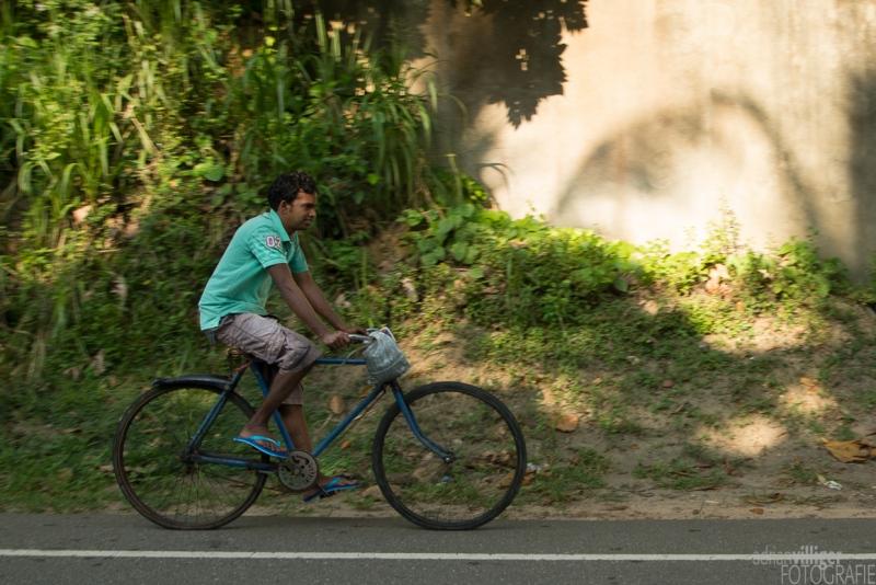 15_D600_SriLanka-7379
