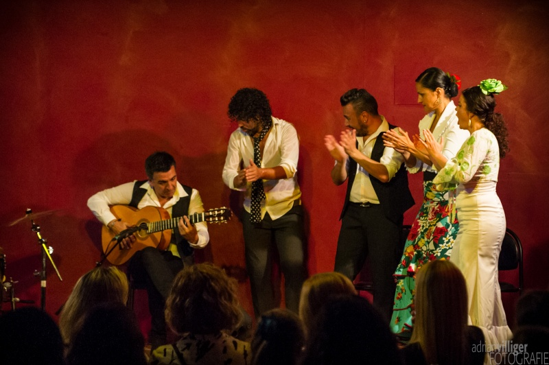2016_09_17_al_flamenco_bern-145